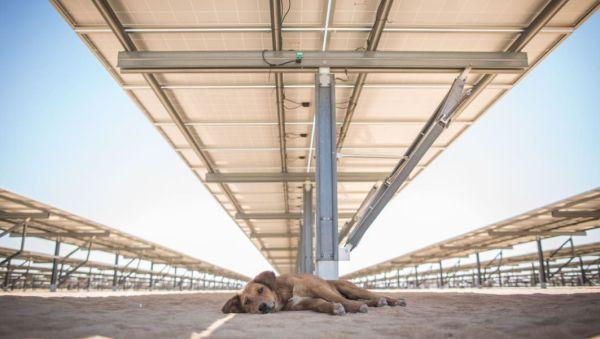 Solar Mega Projects